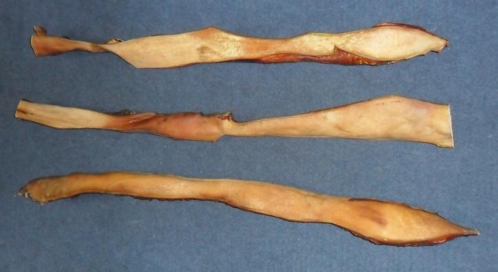Rinder-Kopfhaut, lang,ca. 50 cm, 1 kg