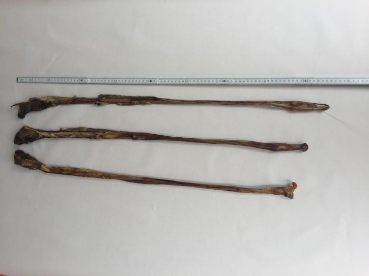 Kalbsziemer m. Fleisch, ca. 80-90 cm, 1 Stück