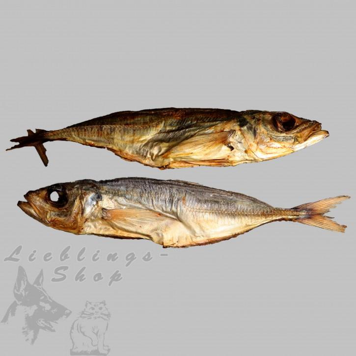 Trocken-Fisch (Makrele), 500 g