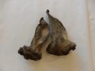 Hirsch-Ohren mit Fell, groß, 1 St
